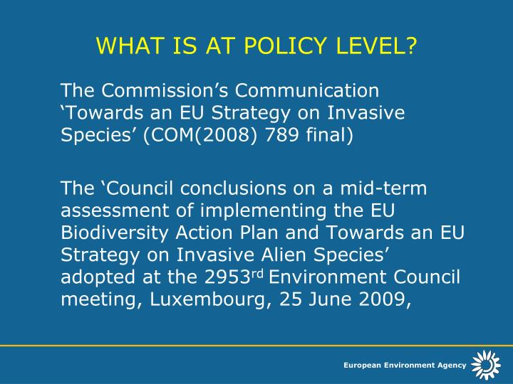 WHAT IS AT POLICY LEVEL?