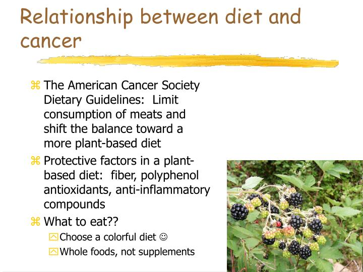 Relationship between diet and cancer