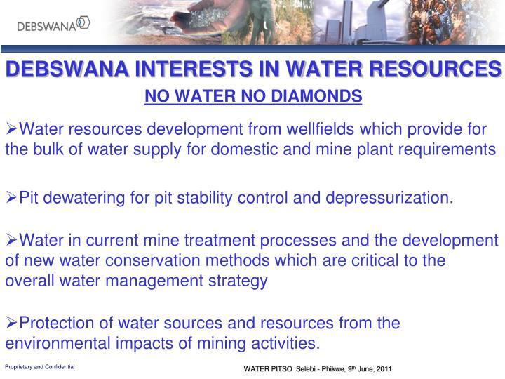 DEBSWANA INTERESTS IN WATER RESOURCES
