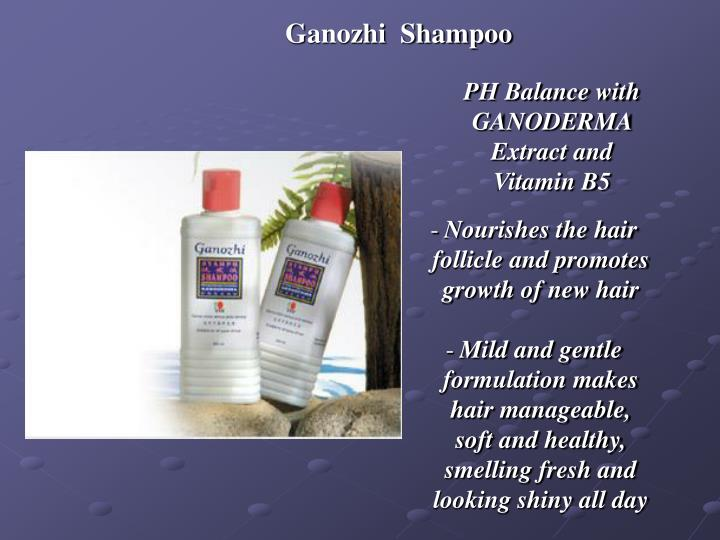 Ganozhi  Shampoo