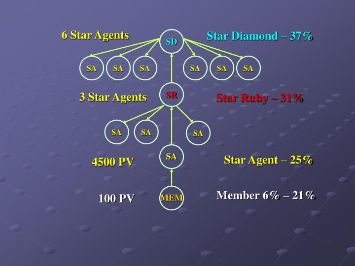 6 Star Agents