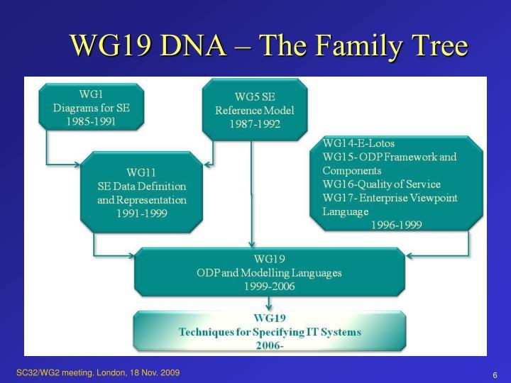 WG19 DNA –