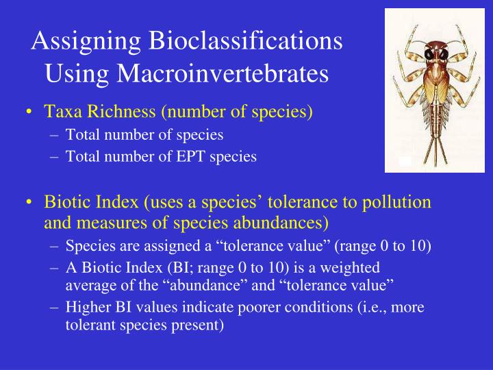 Assigning Bioclassifications
