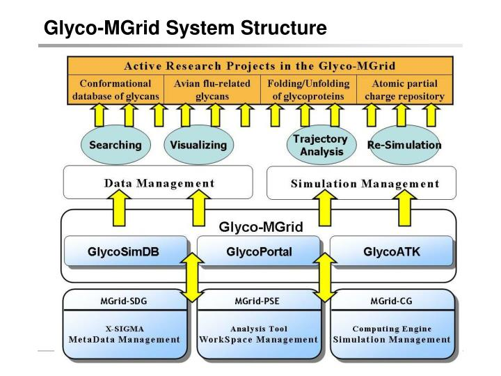 Glyco-MGrid System Structure