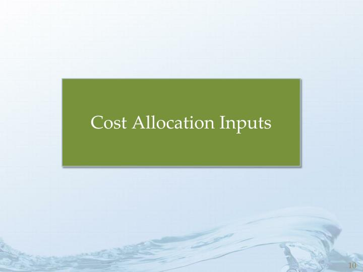 Cost Allocation Inputs