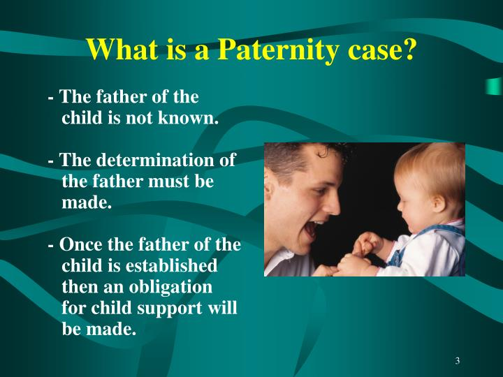 What is a paternity case