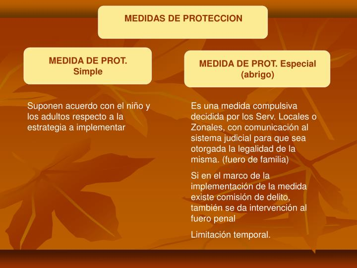 MEDIDAS DE PROTECCION