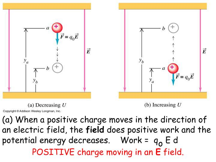 (a) When a positive charge moves in the direction of an electric field, the