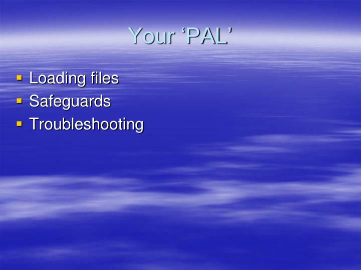Your 'PAL'