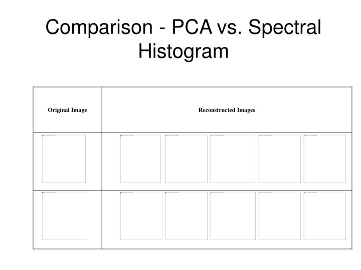 Comparison - PCA vs. Spectral Histogram