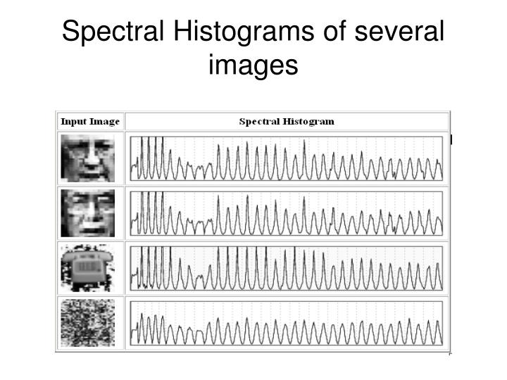 Spectral Histograms of several images