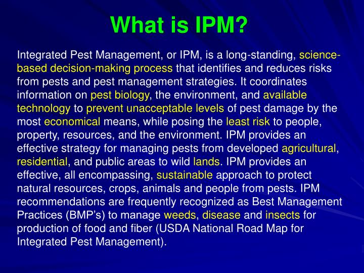 What is IPM?