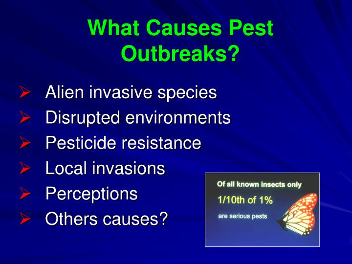 What Causes Pest Outbreaks?
