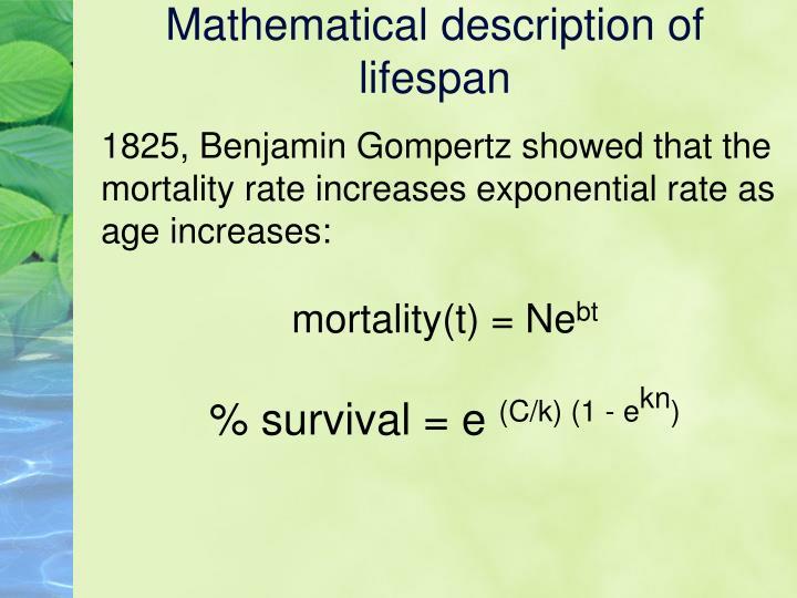 Mathematical description of lifespan