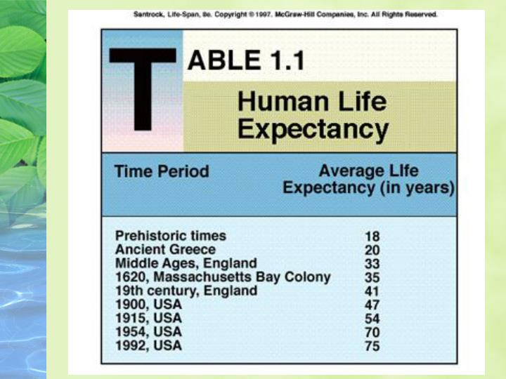 Human lifespan demographics
