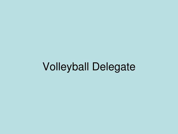 Volleyball Delegate