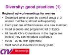 diversity good practices 1