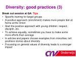 diversity good practices 3