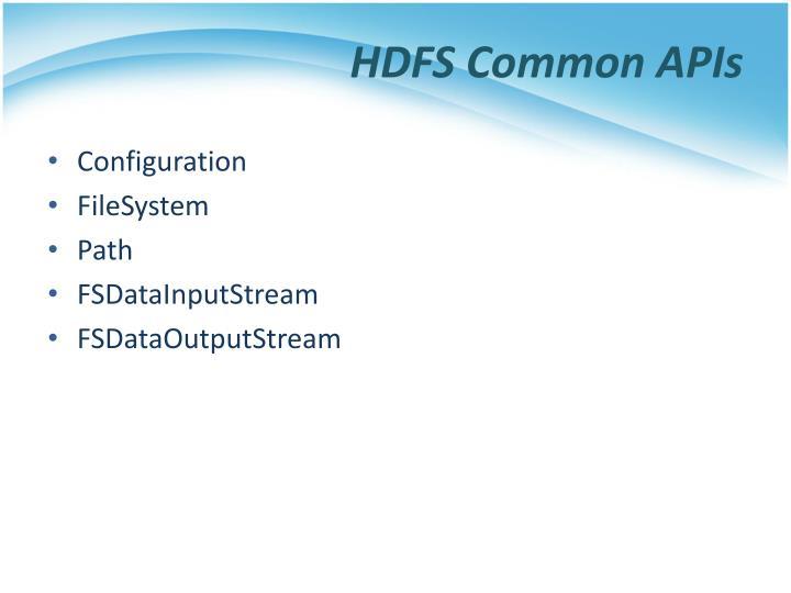 HDFS Common APIs