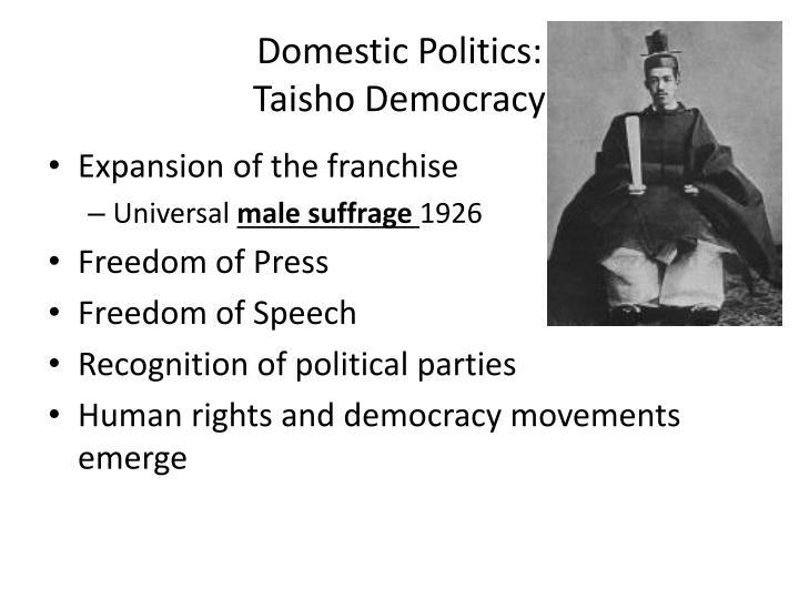Domestic Politics: