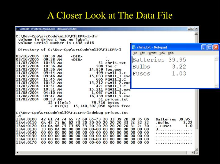 A Closer Look at The Data File