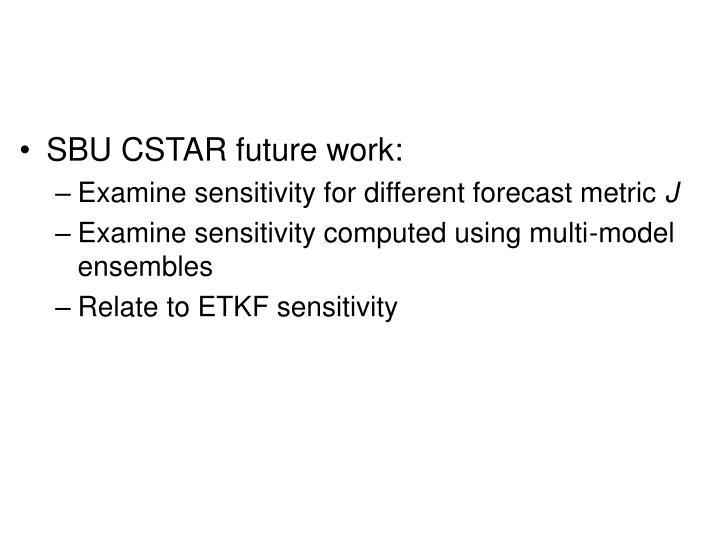 SBU CSTAR future work: