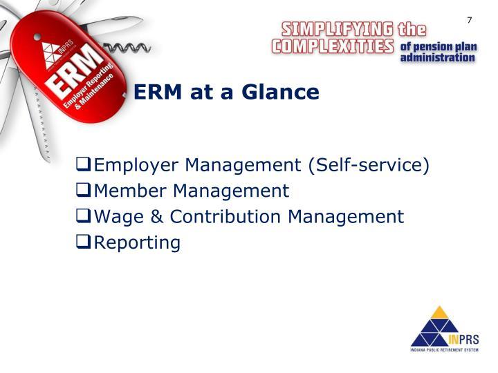 ERM at a Glance