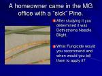 a homeowner came in the mg office with a sick pine
