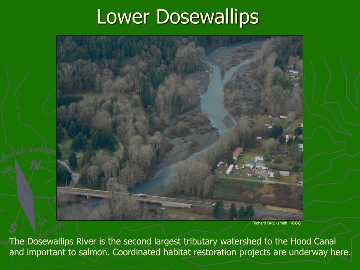 Lower Dosewallips