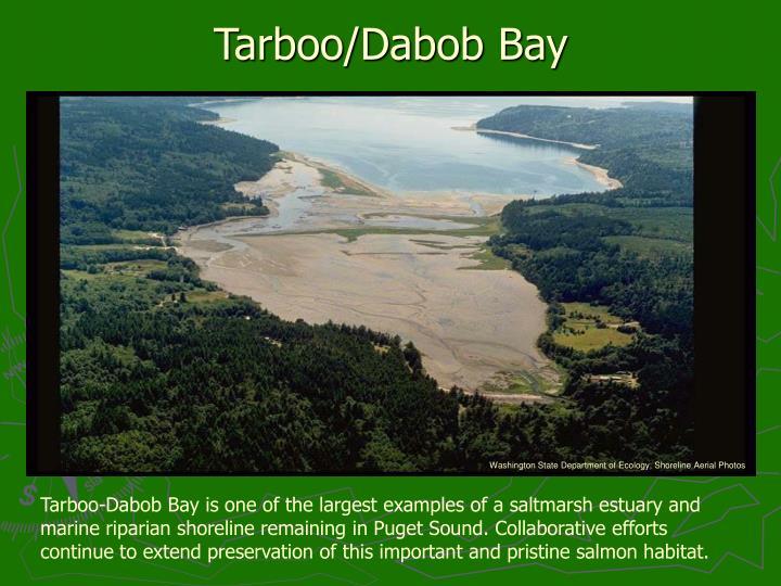Tarboo/Dabob Bay