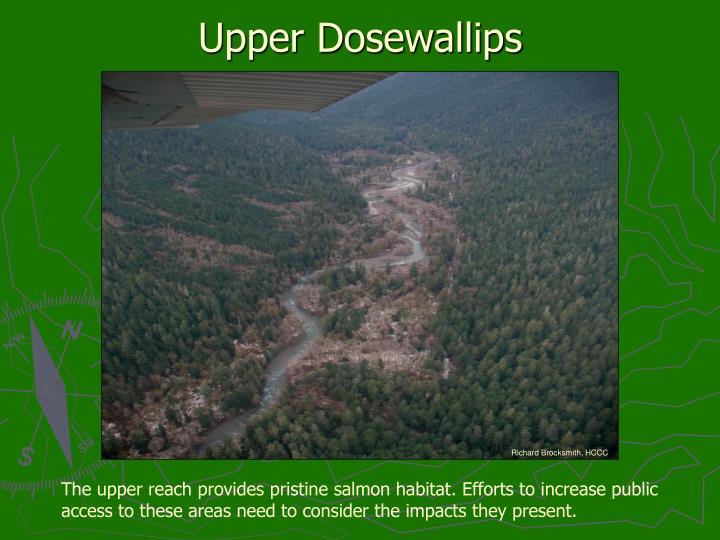 Upper Dosewallips