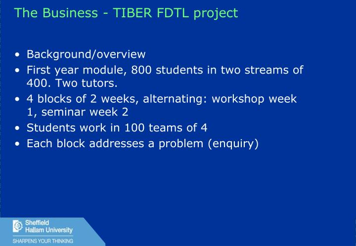 The Business - TIBER FDTL project