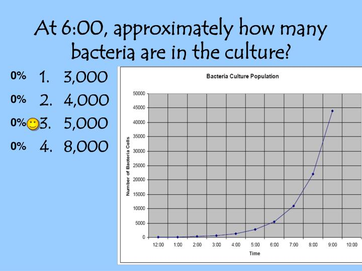 At 6:00, approximately how many bacteria are in the culture?