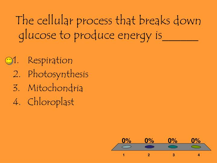 The cellular process that breaks down glucose to produce energy is______