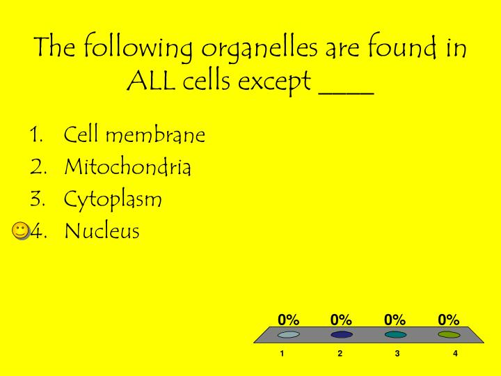 The following organelles are found in ALL cells except ____