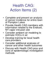 health cag action items 2