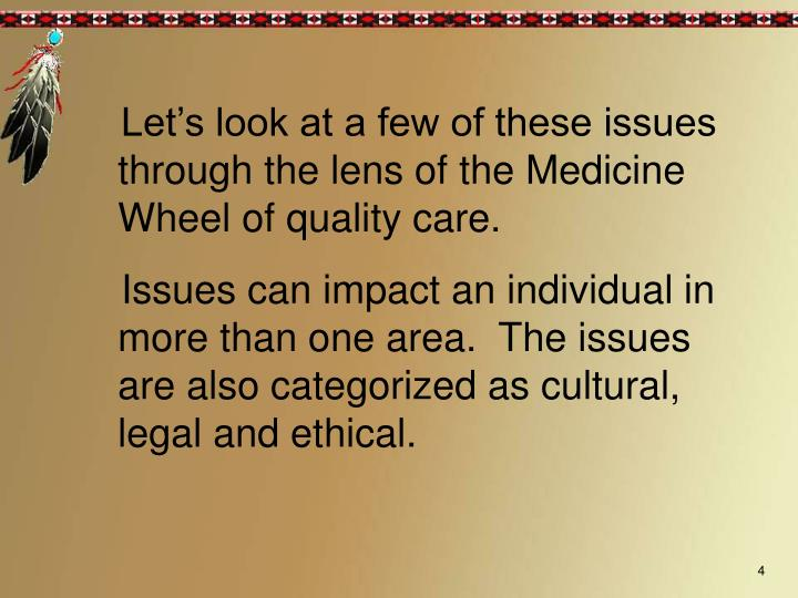 Let's look at a few of these issues through the lens of the Medicine Wheel of quality care.
