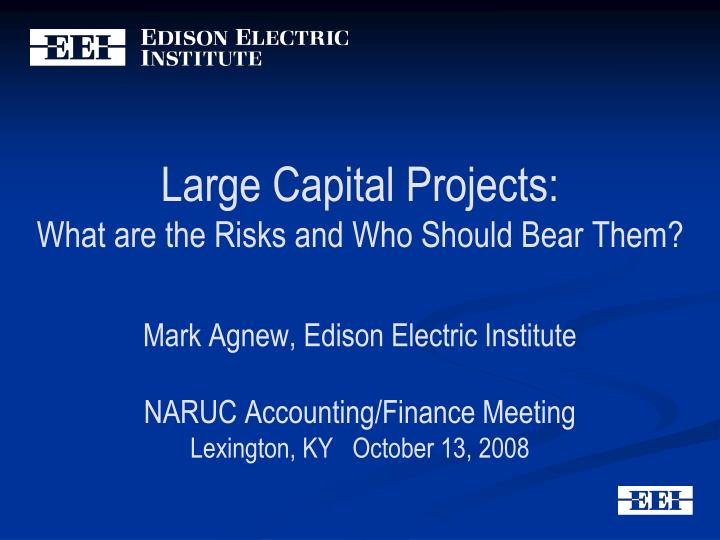 Large Capital Projects: