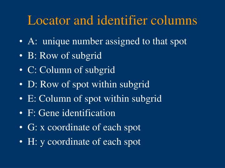 Locator and identifier columns