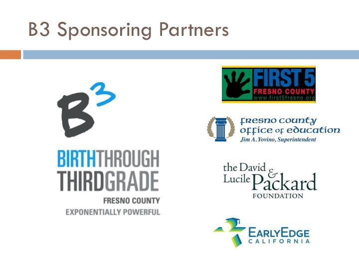 B3 Sponsoring Partners