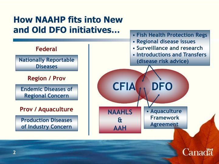 How NAAHP fits into New and Old DFO initiatives…