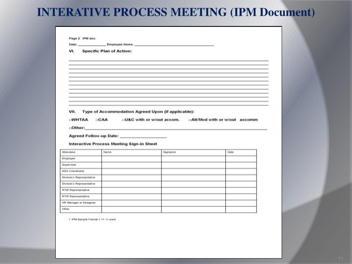 INTERATIVE PROCESS MEETING (IPM Document)