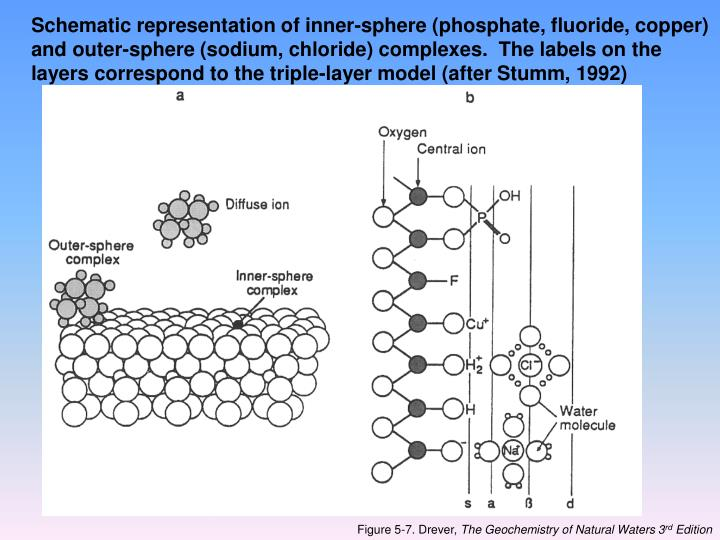 Schematic representation of inner-sphere (phosphate, fluoride, copper) and outer-sphere (sodium, chloride) complexes.  The labels on the layers correspond to the triple-layer model (after Stumm, 1992)