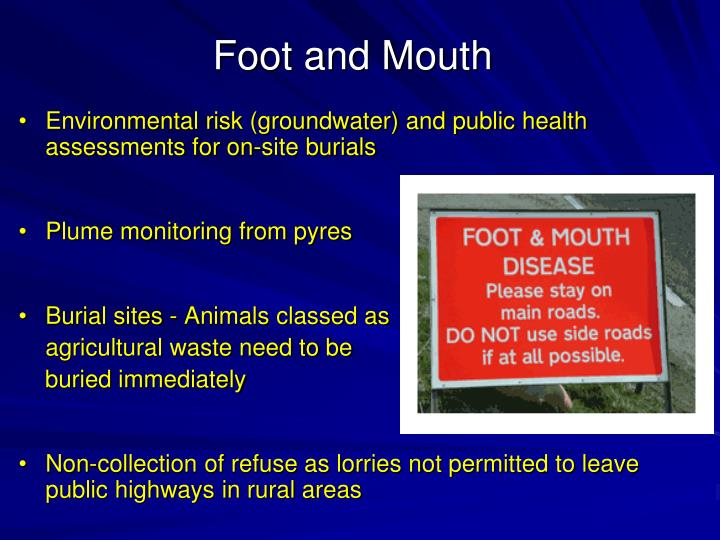 Environmental risk (groundwater) and public health assessments for on-site burials