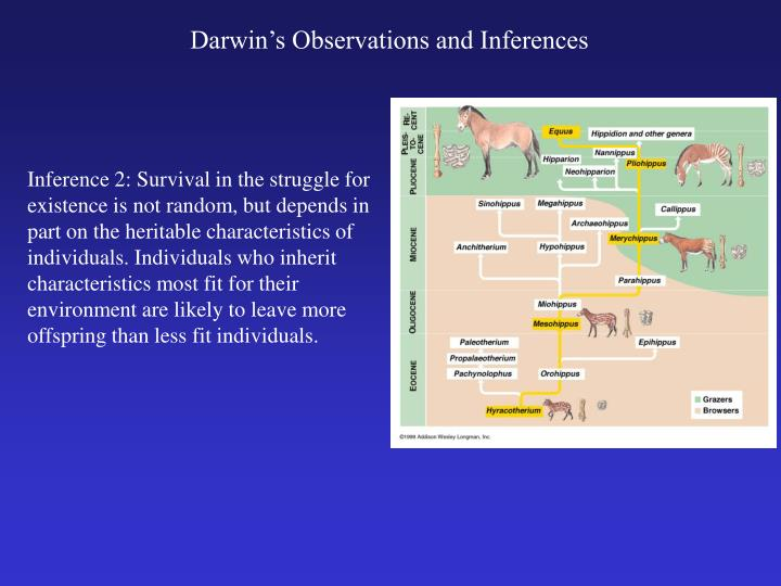 Darwin's Observations and Inferences