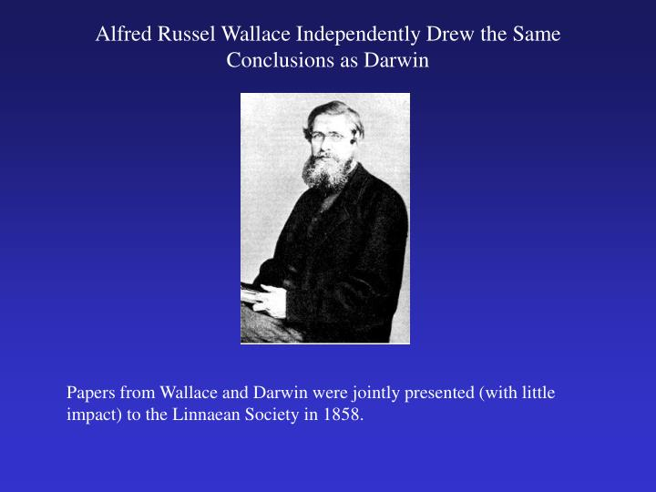 Alfred Russel Wallace Independently Drew the Same Conclusions as Darwin