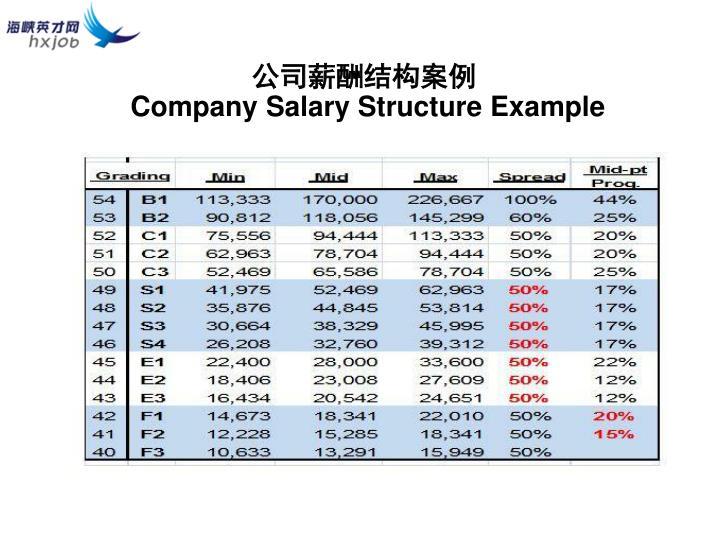 公司薪酬结构案例