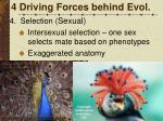 4 driving forces behind evol9
