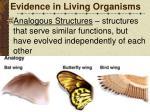 evidence in living organisms5