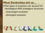 what similarities tell us